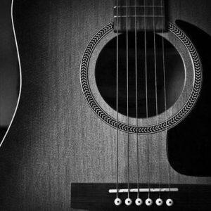 گیتار آریا مدل قرن۱۹